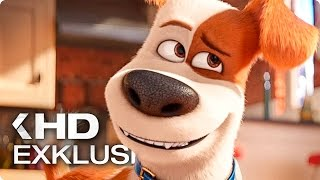 PETS Exklusiv Clip & Trailer German Deutsch (2016)