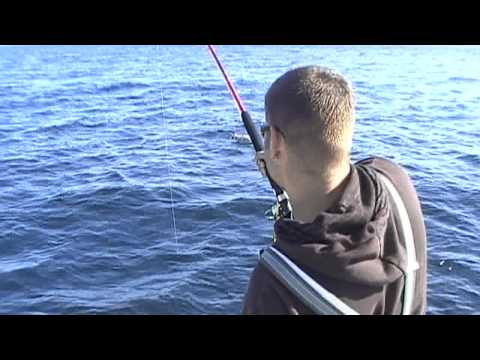 Angeln in Norwegen auf Hitra- Norway Big Game Fishing