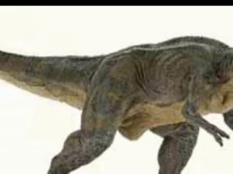 dinosaurios juguetes para los niños, juguete Dinosaurios y Animales juguetes, dibujos animados para