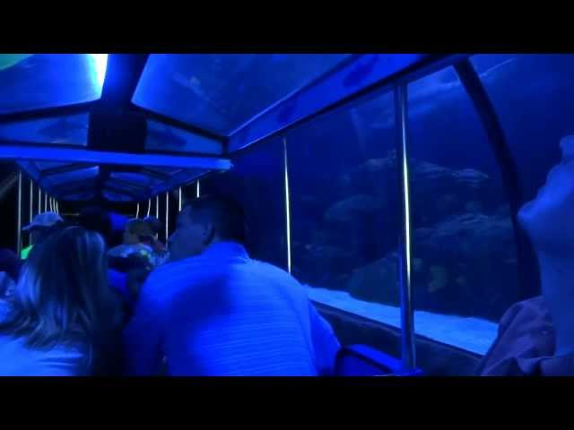 2012 Shark Voyage Adventure Train at Houston's Downtown Aquarium