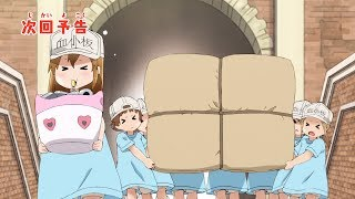 Cells at Work! video 8