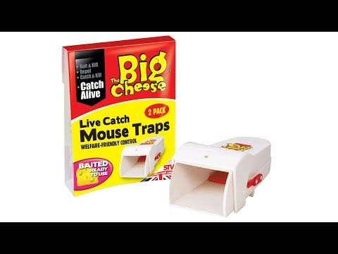 Live Catch Ready to Use Mouse Trap – welfare friendly control from The Big Cheese thumbnail