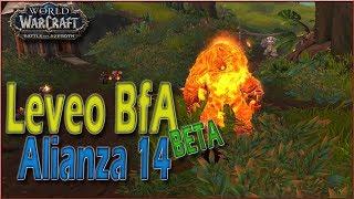 Llega el CoD y EXPLOTA Blizzard | LEVEO en Battle for Azeroth | Alianza 14