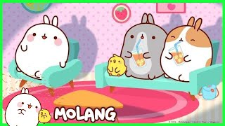 Molang - A Restless Night | Cartoon for kids