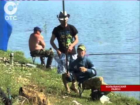 рыбалка на чаусе в колывани