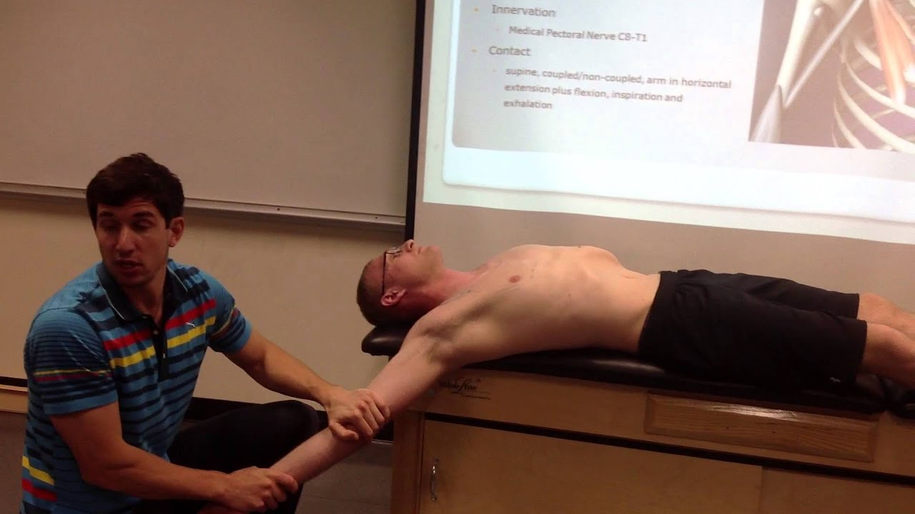Pectoralis Minor  Palpation  Manual Therapy And Stretch