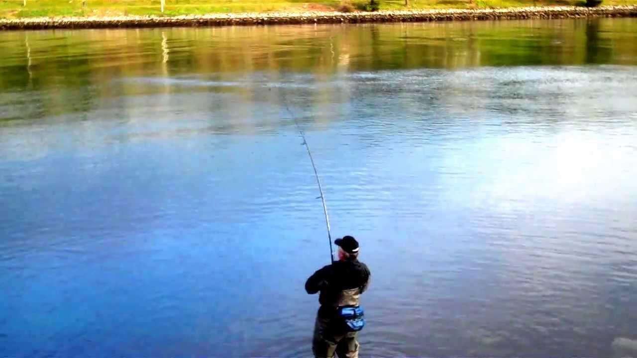 Cape cod canal striped bass 32 catch release youtube for Striper fishing cape cod