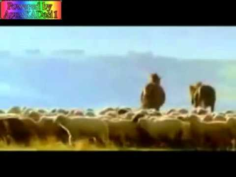 A Jeelain Ik Pal Mein (kyon Ki Hindi Movie Song)  - Youtube.flv video