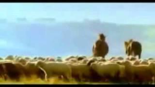 A Jeelain Ik Pal Mein (Kyon Ki Hindi Movie Song)  - YouTube.flv