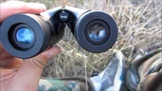 Bushnell Perma Focus Binocular Review by MUDD CREEK