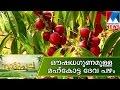 Karinkozhi Farming Nattupacha  Manorama News