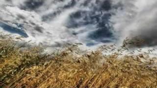 Watch Haris Alexiou Panselinos video
