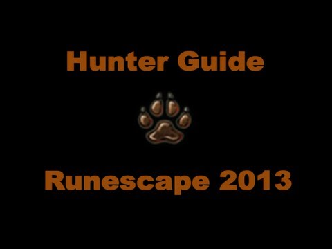 1-99 Hunter Guide Runescape 2013 – Fastest XP and Money Making Methods