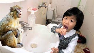 Em bé 3 tuổi đánh răng cho khỉ siêu đáng yêu ❤ Trò chơi trẻ em với con vật ❤ Baby Brushing His Teeth
