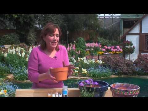 How to Make Garden Pots - Food & Home - ModernMom