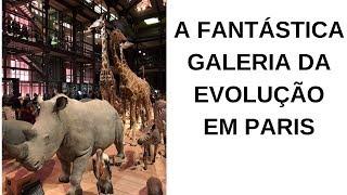 A FANTÁSTICA GALERIA DA EVOLUÇÃO DE PARIS