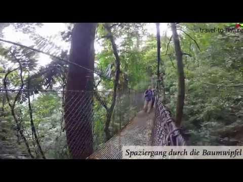 Costa Rica: Abenteuer Und Action Mit Travel-to-nature