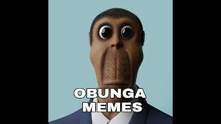 OBUNGA MEMES COMPILATION