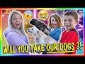 Download WILL YOU TAKE OUR DOGS?!?! | We Are The Davises in Mp3, Mp4 and 3GP