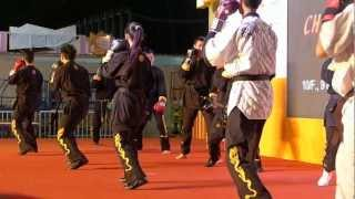 Heng Yue Yen Long Kwon 恆宇仁龍拳 performance at 47th HKBPE Hong Kong kungfu 23-12-2012