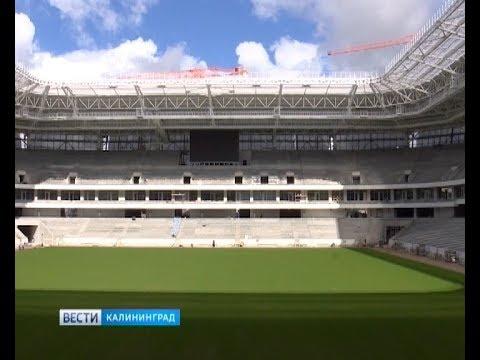 ФИФА: Местные власти нас уверили, что стадион построят вовремя