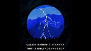 download lagu Calvin Harris  - This Is What You Came gratis