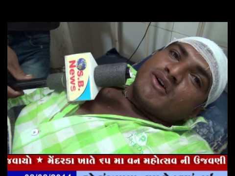08-08-2014,news,ivn24news,saibaba,gajanan,ganpatibapa,gujarati news