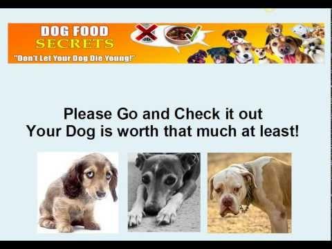 Best Dog Food For Doberman With Sensitive Stomach