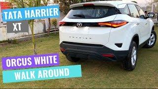 Walk Around Tata harrier xt variant   Orcus White   CarQuest
