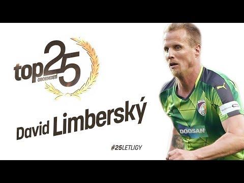 TOP 25 osobností: David Limberský