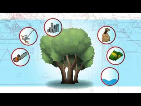 Odcinek 2 - Drzewa W Mieście