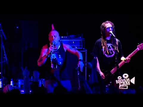 Exploited - Dogs Of War Live