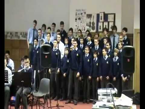 Castleknock College, Castleknock, Dublin 15 - Post-Primary Finalist 2013