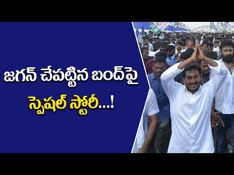 YSRCP Jagan Mohan Reddy successful AP bandh ll reasons behind head ll Pulihora News