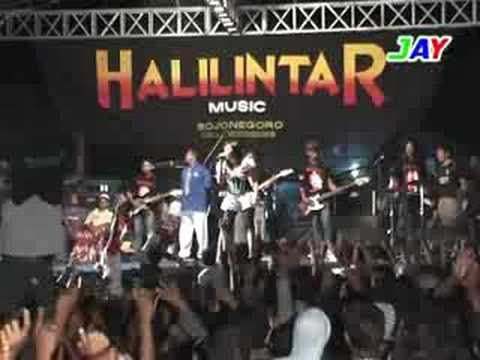 dangdut halilintar