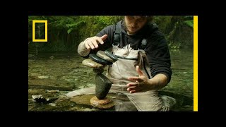 Watch This Guy Balance Rocks on Water in the Most Mesmerizing Way   Short Film Showcase