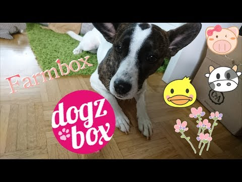 Farmbox // DogzBox // 'unboxing // Juni2017