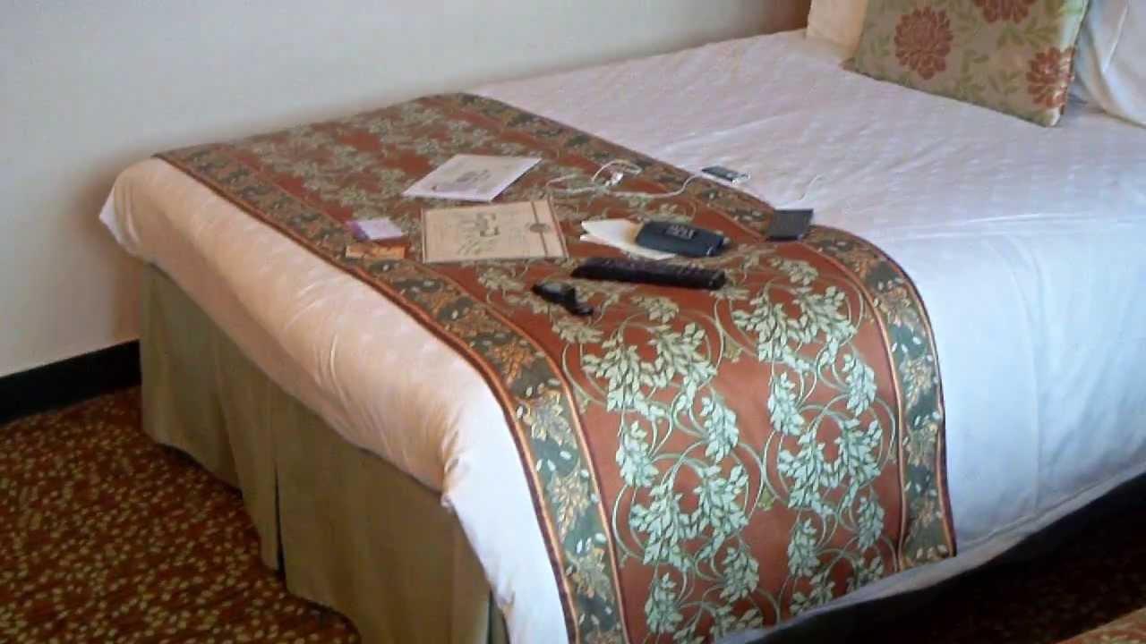 Disneyland paris hotel sequoia lodge in golden forest - Chambre standard sequoia lodge ...