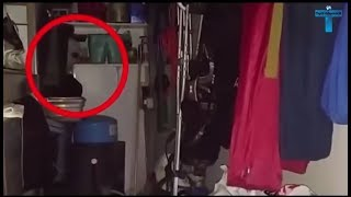 Most Mysterious Creature Caught On Camera | Scary Unidentified Creatures Videos