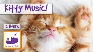 download lagu Kitty . Relaxing  For Cats And Kittens gratis