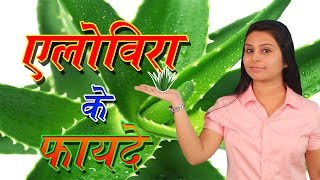 Benefits Of Aloe Vera   Aloe Vera Good For Skin Face Hair Loss