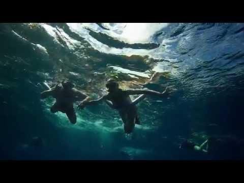Maui Snorkeling   Best Snorkel Tours In Maui    1 Ocean Activity