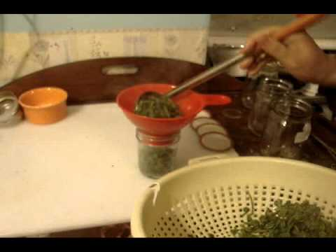 SHTF cooking fiddleheads