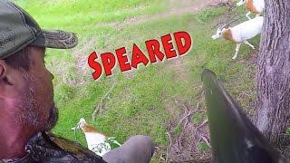 Spear Hunting Texas Big Game 4K  Running Kill