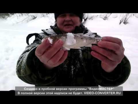 андрей новиков рыбалка