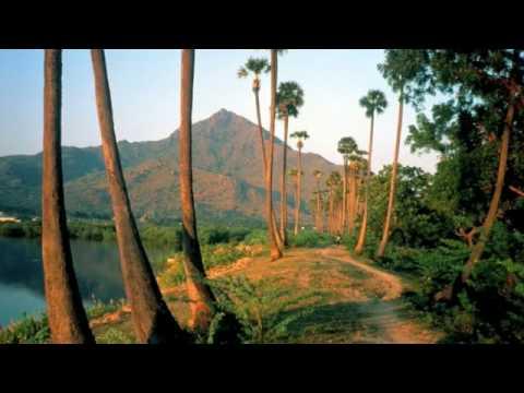 Nithyasree Mahadevan - Thiruppavai - Track 1 - 2- 3 - 4