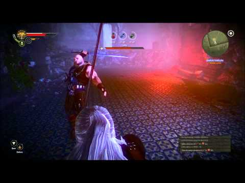 The Witcher 2 : Assassins Of Kings // Letho Battle [Full HD]