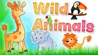 The ANIMALS for kids - Wild animals english vocabulary
