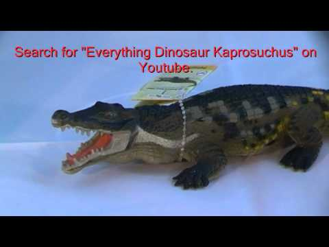 Deinosuchus Prehistoric Crocodile Model Review (Safari Ltd) by Everything Dinosaur
