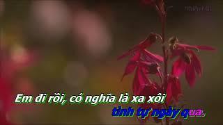 Nguoi Thuong Ke Nho Karaoke Song Ca Voi Phuong Anh